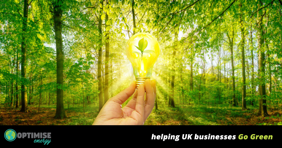 The Green Energy Solutions Provider For Uk Business